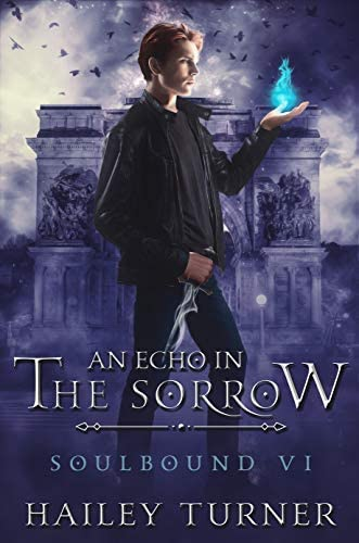 An Echo in the Sorrow Soulbound Book 6 product image