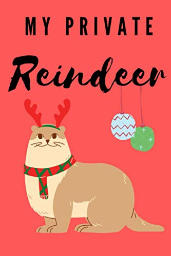 My private Reindeer: Perfect Christmas Gift For Kids and Adults Lined Notebook 6x9 size