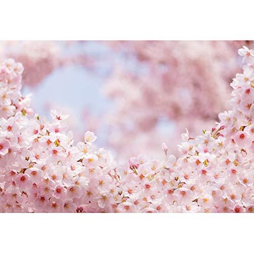 YongFoto 3x2,5m Vinyl Foto Hintergrund Undeutliche rosa Kirschblüte Fantasie Fotografie Leinwand Hintergrund Tapete Hochzeit Kinder Fotostudio Hintergründe Fotoshooting