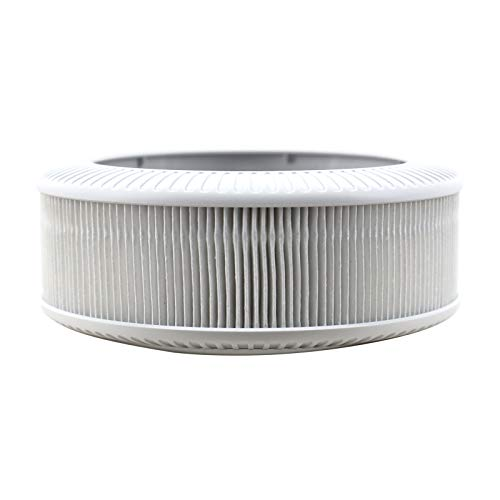 QUEENTY True HEPA Filter - Replacement Air Purifier Filter Odor Allergies Eliminator for Smoke, Dust, Home, Office and Pets (for FC02 Only)