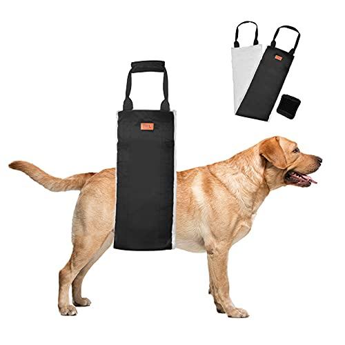 Hundegeschirr Tragehilfe Tragbar Hunde Rehabilitation Tragegurt Mittel Groß Hunde Gehhilfe mit Griffe Sicherheitshilfe für Behinderte, Verletzte, Ältere Hunde