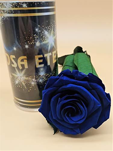 Almaflor Rosa eterna preservada Azul Premiun. Gratis TU ENVÍO. Rosa preservada eterna...
