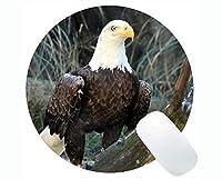 滑り止めラバーゲーミングラウンドマウスパッド、イーグルバードプレデターくちばし鳥テーマラバーラウンドマウスパッド