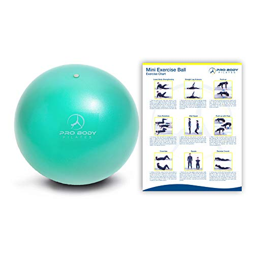 ProBody Pilates Ball Workout Ball - 9 Inch Mini Physical Therapy Ball for Stability, Barre, Yoga, Bender, Balance, Core Training, Recovery Small Exercise Ball for Between Knees (Aqua)