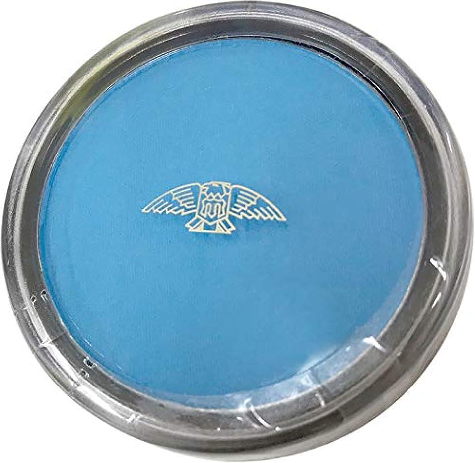 シンプルな規模特異性三善 プラスカラー ブルー