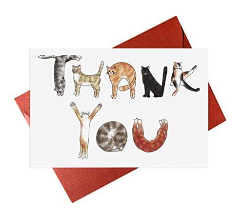 Cats Thank You Greeting Cards