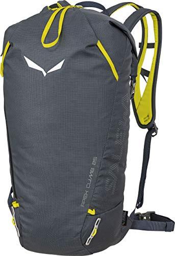 Salewa Apex Climb 25 Rucksack 55 cm