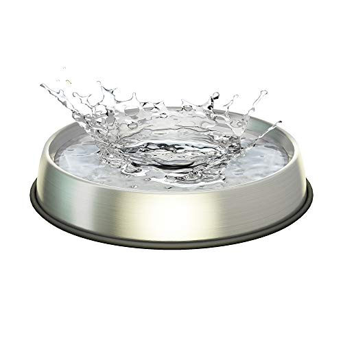 Dr. Catsby Water Bowl, Whisker Friendly, Stainless Steel, Non Skid, Dishwasher Safe