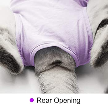 Cat Recovery Suit Soft Anti Licking Pour Blessures Abdominales Chirurgicales E collier Alternative Pour animal de compagnie
