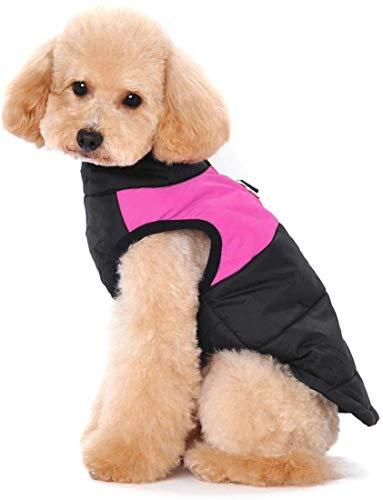 WONEIRA Hundemantel Winterjacke wasserdichte Jacke,Warm Regenmantel Gefütterter Brustschutz Puffer Hund Welpen