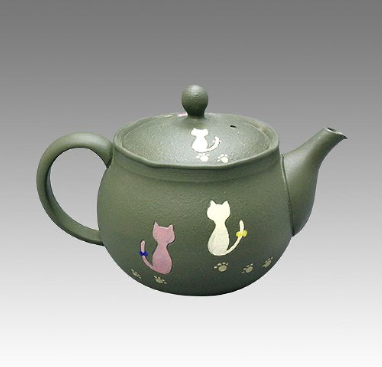 TOKYO MATCHA SELECTION - Tokoname Kyusu teapot - HAKUYO - Chlorite Cat 300cc ml - obi ami acier inoxydable net [Standard ship by Int'l e-packet  with Tracking & Insurance]
