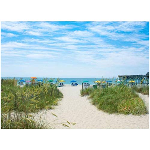 DIY Paint by Numbers Beautiful Beach in South Carolina for Adults Kids Beginners Painter Colorful Oil Paintings Gift Kit with Paintbrushes 16x20inch