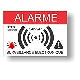 Pegatinas disuasorias de alarma – Vigilancia electrónica – Lote de 12 – Dimensiones: 14,8 x 10,5 cm