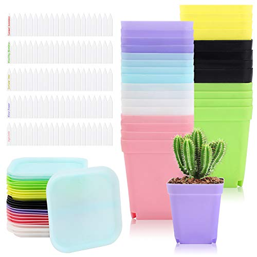 28 Packs 3 Inch Square Plants Nursery Pot Multi Color Plastic Plant Seedling Pots Flower Pots Nursery Transplanting Planter Container with Saucer for Your Room, Garden Office and Balcony Decor