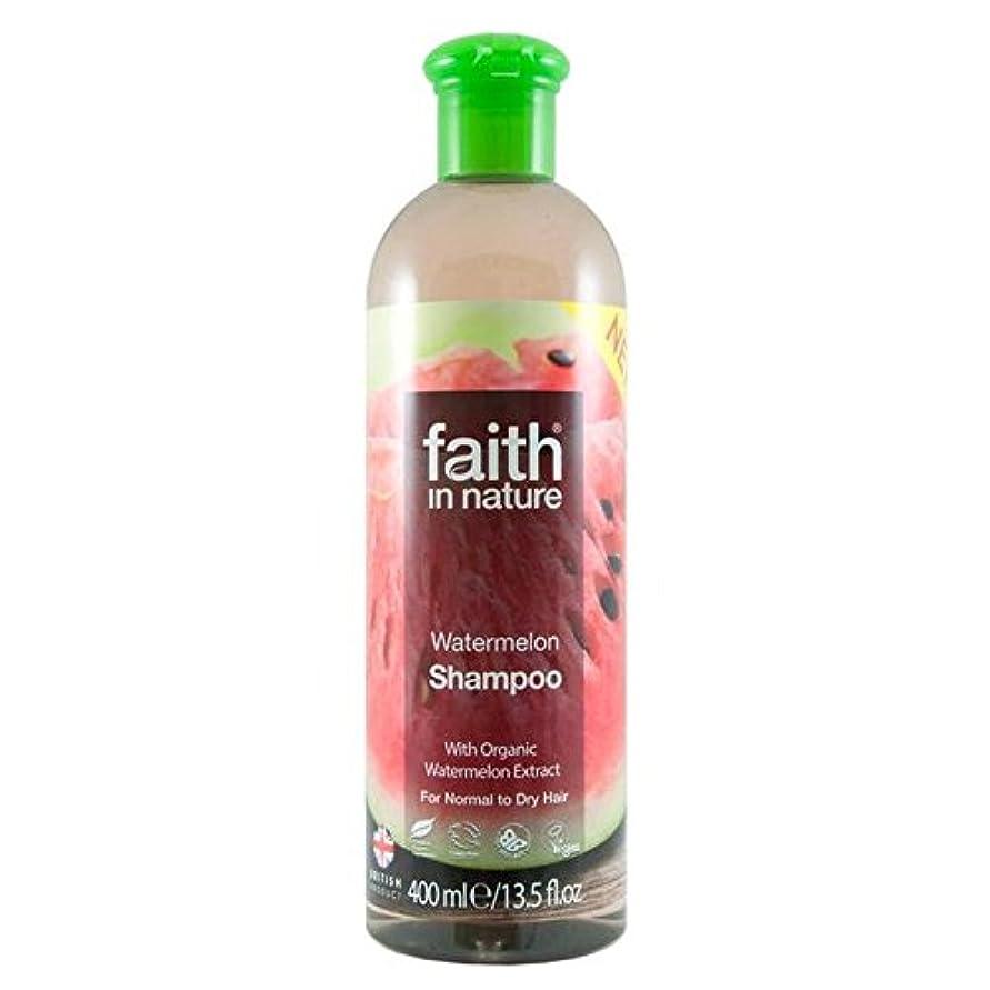 無効にする賃金準拠Faith in Nature Watermelon Shampoo 400ml (Pack of 6) - (Faith In Nature) 自然スイカのシャンプー400ミリリットルの信仰 (x6) [並行輸入品]