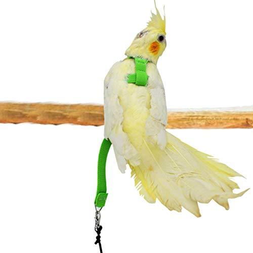 E/T Cuerda de Vuelo de Loro | Arnés de pájaro de Mascotas Loro | Correa de Entrenamiento de Aves | Pájaro Entrenamiento al Aire Libre Llevar Vuelo Rop | Ajustable - Seguro - Práctico