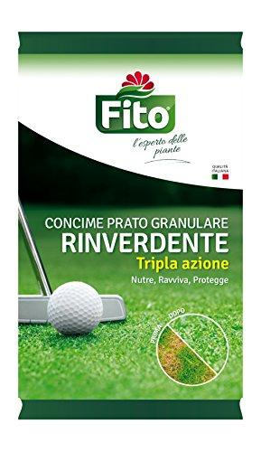 Fito RINVERDENTE ANTIMUSCHIO GRANULARE Concime a Tripa Azione, Verde, 22x23.7x15 cm