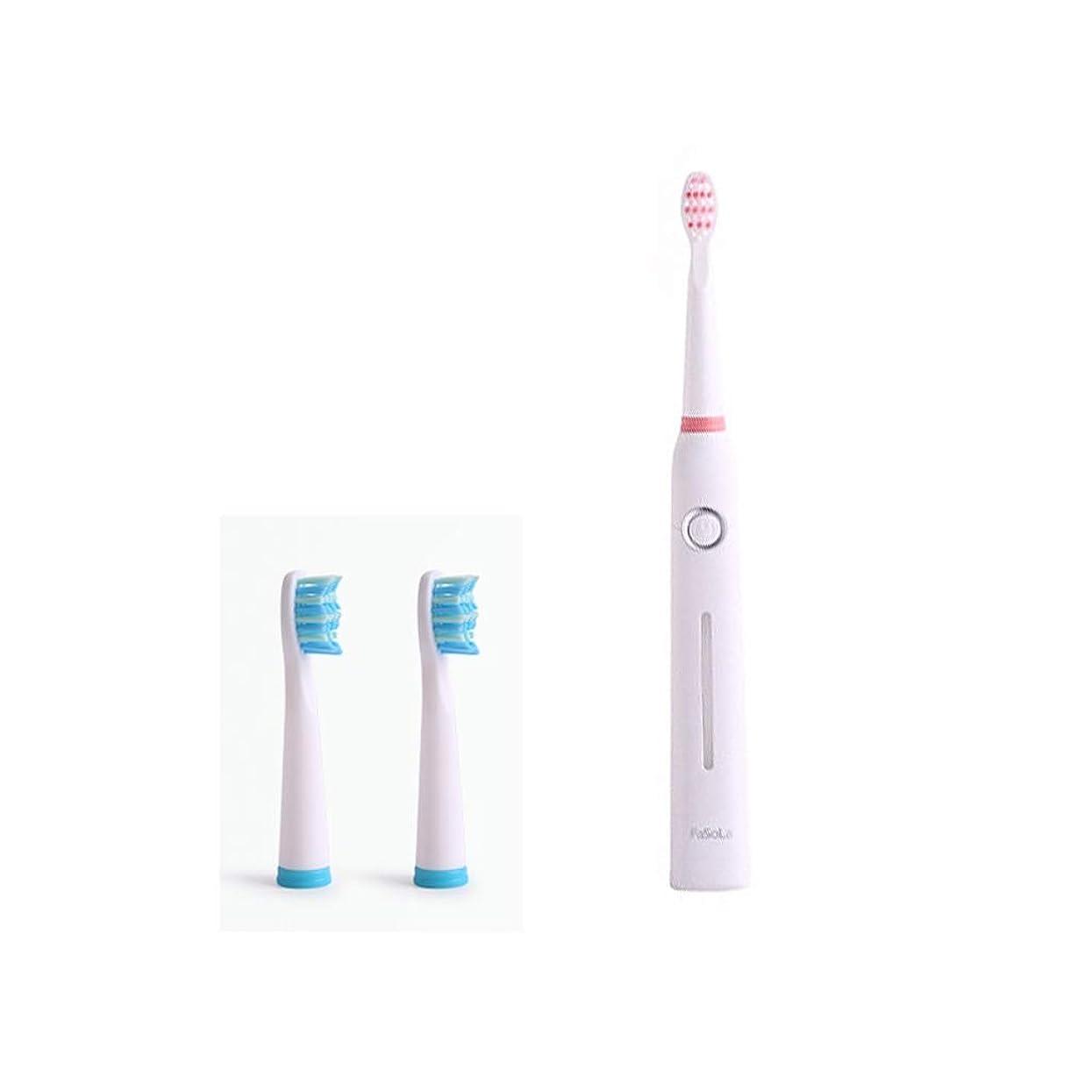 どうやって傀儡言い訳電動歯ブラシ 日本の女性の電動歯ブラシの柔らかい毛の家の音波の自動防水再充電可能な歯ブラシ (色 : A)