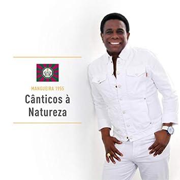 Cânticos à Natureza: Mangueira 1955