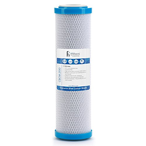 Coconut Shell CTO, Cyst Carbon Block Drinking Water Filter, 2.5 x 10, 0.5 micron