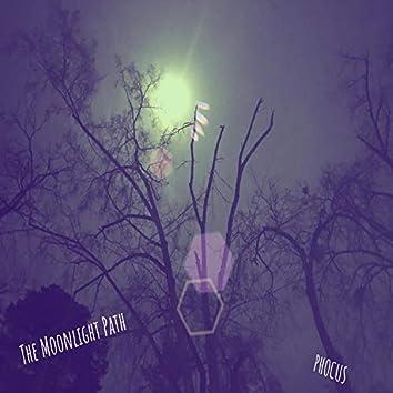 The MoonLight Path