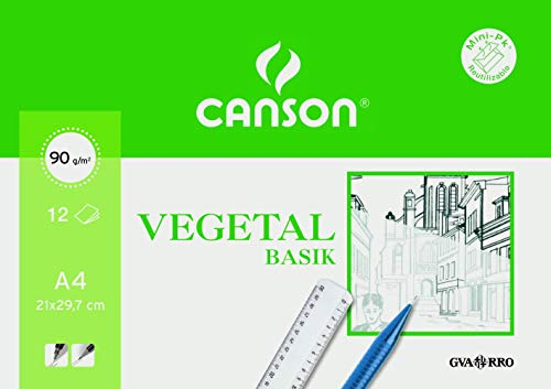 Canson 407621 - Papel para acuarela, 12 hojas