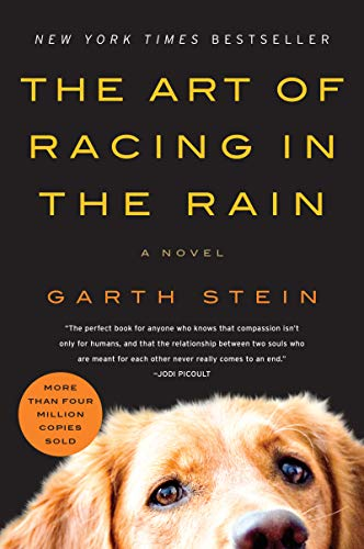 The Art of Racing in the Rain: A Novel (English Edition)