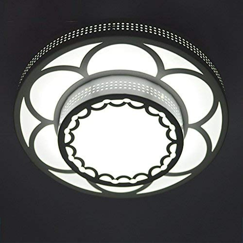 ZHAS Beleuchtung Creative Foyer Hall Korridor Korridor Lampe Eingangslampe Gehweg Lichter Wohnzimmer Led Deckenlampe (Farbe  Wei-Oberflche)