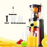 QWESHTU Centrifuga Frutta e Verdura Estrattore di Succo Freddo Bocca Larga Estrattore Completo, Alto Valore Nutrizionale, Adatto per Succhi di Frutta e Verdura