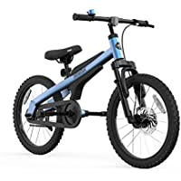 Segway 18 Inch Ninebot Kids Bike With Training Wheels