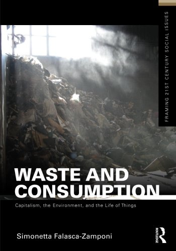 Waste and Consumption (Framing 21st Century Social Issues)