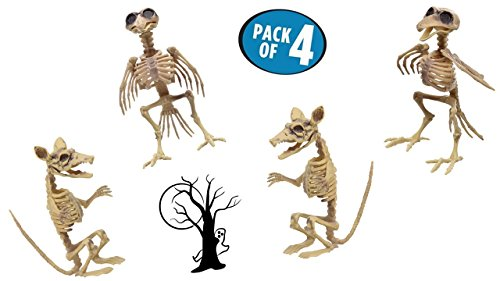 TopNotch Outlet Halloween Skeleton - Plastic Skeleton - Rat Skeleton - Crazy and Creepy Halloween Skeletons That Don't Always Have to Be Human - Skeleton Raven - Halloween Decorations
