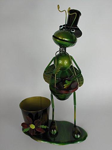 Small-prijs grashüfer met muziekinstrument trommel en plantenpot