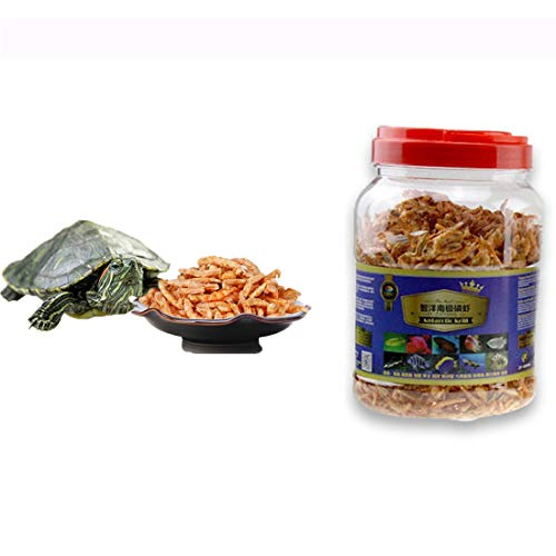 Red Belly Turtle Food