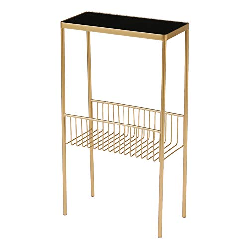 ZRN Rectangle Tempered Glass Coffee Table Modern Side End Table with Metal Storage Shelf for Living Room