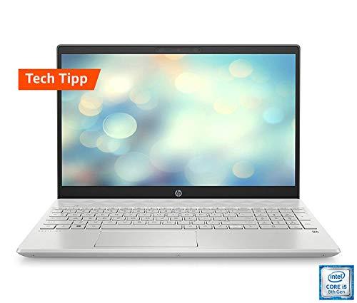 HP Pavilion (15,6 Zoll / Full HD IPS) Laptop (Intel Core i5-8265U, 8GB DDR4, 512GB SSD, Nvidia GeForce MX130 2GB DDR5, Windows 10 Home) silber 15-cs2026ng