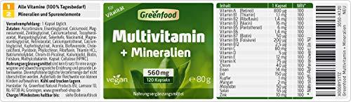 Greenfood Multivitamin + Mineralien, Komplettversorgung, 120 Vegi-Kapseln – ohne künstliche Zusätze, vegan - 2