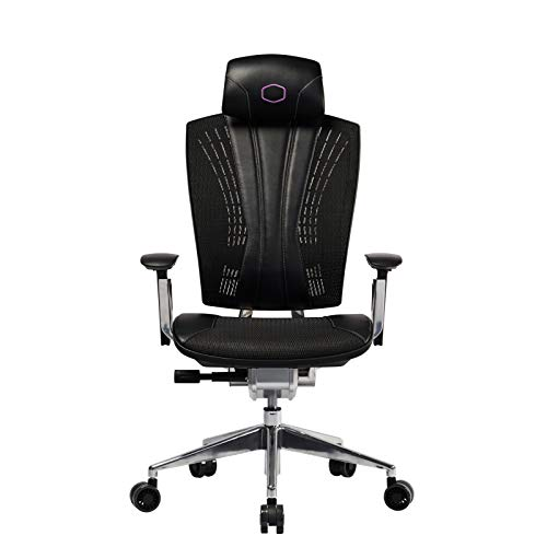 Cooler Master Ergo L Ergonomic Office Mesh Chair, Comfortable Computer Desk Chairs with High Back & Rolling Wheels for Home and Work, Lumbar Support Adjustable Backrest Headrest Armrest Deskchair