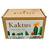 growbro Kaktus,...