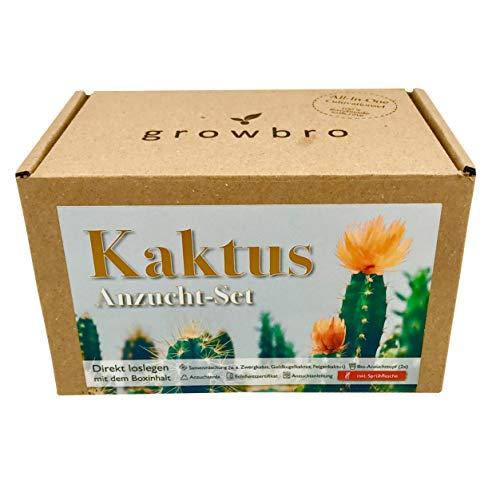 growbro Kaktus, Anzuchtset inkl. Sprühflasche, Geburtstagsgeschenk, Sukkulenten, Geschenke für Frauen & Männer, Gastgeschenk, Zimmerpflanzen, Cactus (Kaktus)
