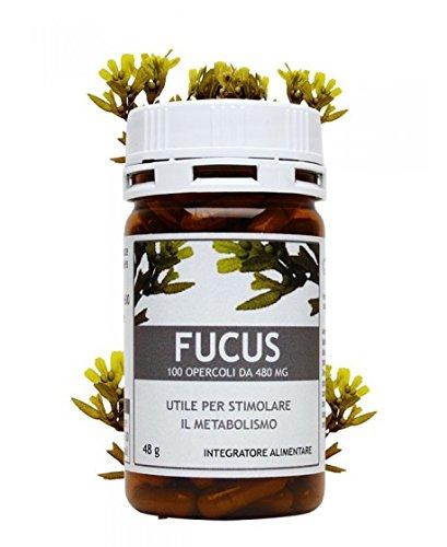 FUCUS 100 Opercoli 400 mg