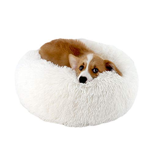 Sunshine smile Haustierbett Rundes Plüsch für Katzen und Hunde,hundebett in Doughnut-Form,plüsch hundesofa katzensofa,katzenbett plüsch,(50cm*50cm)(Weiß)