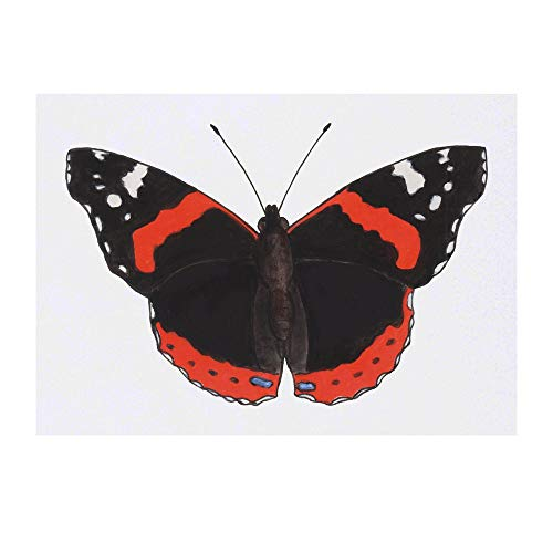 Grand 'Papillon Amiral Rouge' Tatouages temporaires (TO00028735)
