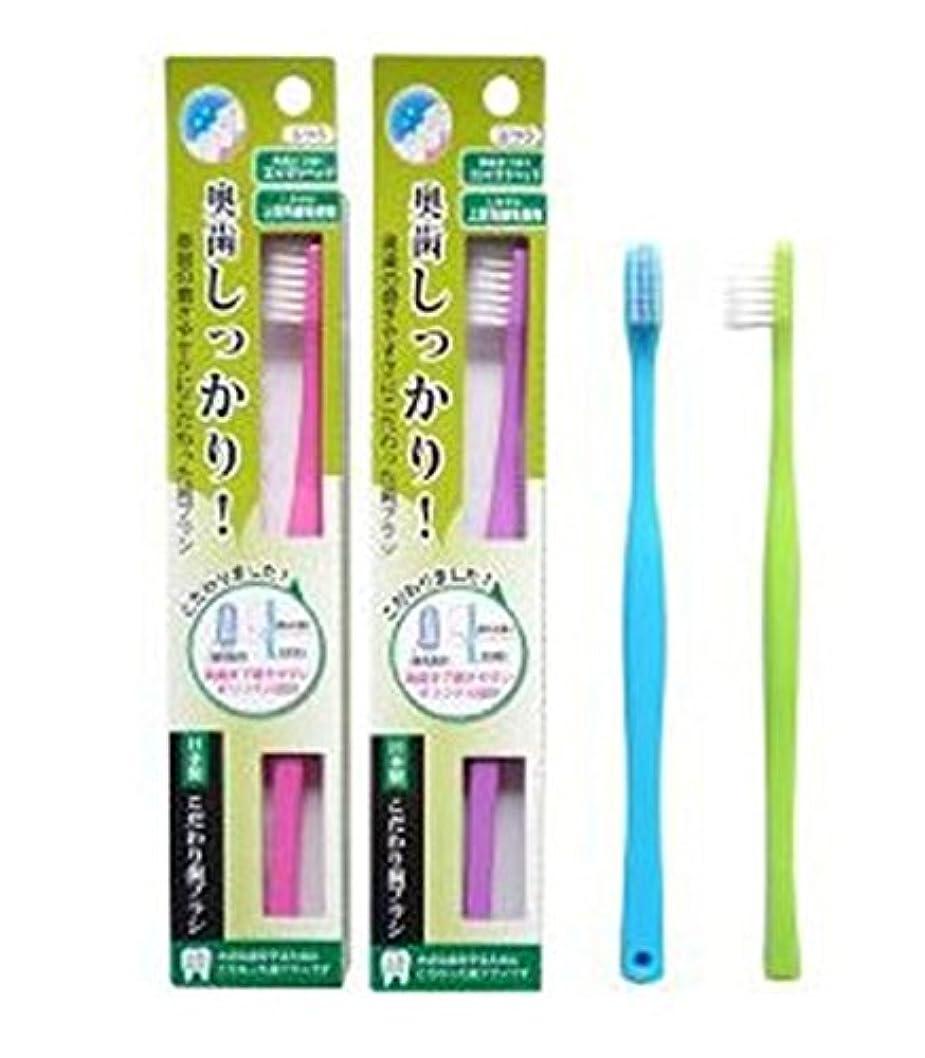 職人環境等しいライフレンジ 奥歯しっかりこだわり歯ブラシ 先細 12本 (ピンク4、パープル4、ブルー2、グリーン2)アソート