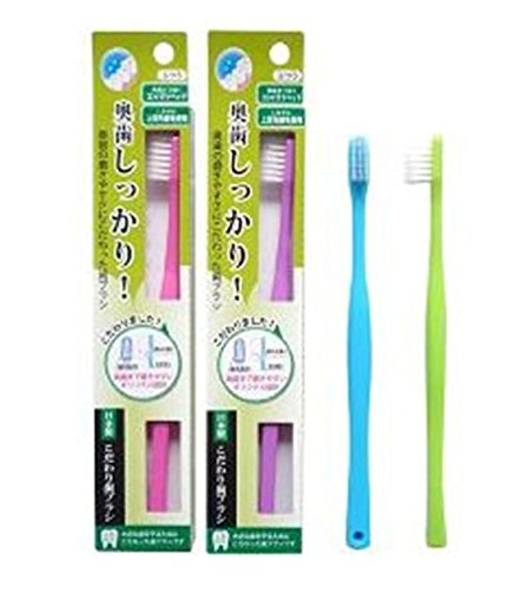 指相互接続間隔ライフレンジ 奥歯しっかりこだわり歯ブラシ 先細 12本 (ピンク4、パープル4、ブルー2、グリーン2)アソート