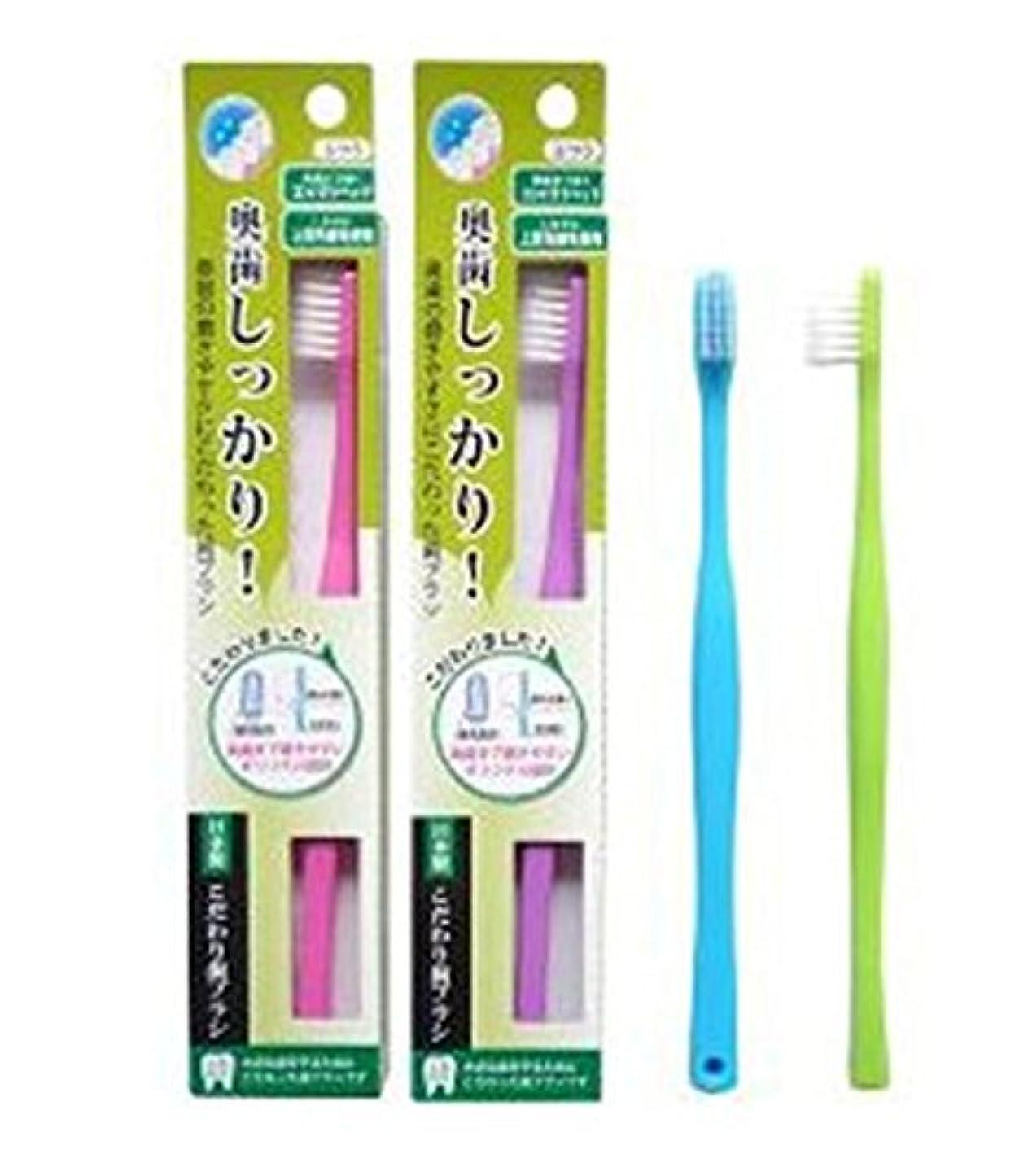 定期的にストリップ遊び場ライフレンジ 奥歯しっかりこだわり歯ブラシ 先細 12本 (ピンク4、パープル4、ブルー2、グリーン2)アソート
