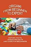 Origami From Beginner To Expert: History, Facts, Unique Projects And Guide For Beginners: Easy Origami For Beginners (English Edition)