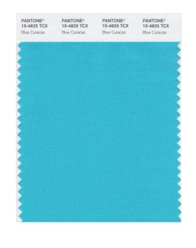 PANTONE Smart 15-4825X Color Swatch Card, Blue Curacao Maryland