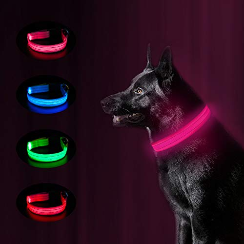 MASBRILL Lighted LED Dog Collar Rechargeable, Waterproof Pet Glowing Collars Night Safety LED Light Up with Nylon Webbing Makes Your Dog Visible, Flashing Light Collar Perfect for Medium Dogs