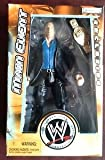 WWE Main Event Exclusive HHH Action Figure